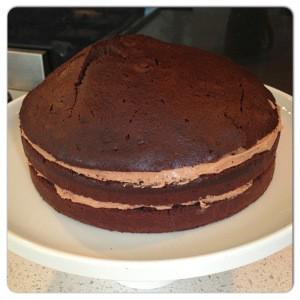 Gâteau Maltesers 7